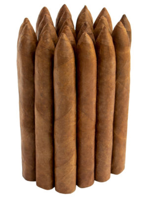 Fox Bundle Cigar