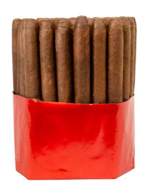 Warped Lirio Rojo Lonsdale